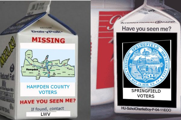 If seen, call your local LWV chapter or election office. (created via google image searches)